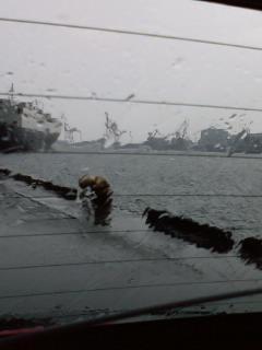 仙台港、鳥の海釣果2008年9月
