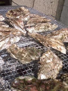 恒例牡蛎食いパーティー2010松島